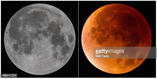 Two images show the moon appearing as a 'supermoon' at midnight and a redtinged 'blood moon' as an optical effect of a total lunar eclipse visible at...