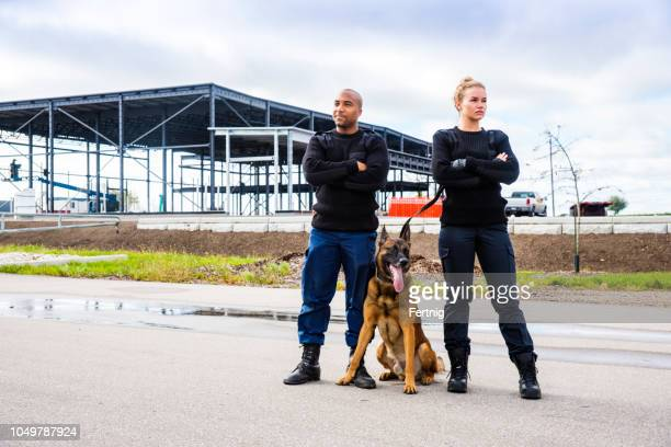 two k-9 security professionals with a belgian malinois on guard. - police dog stock photos and pictures