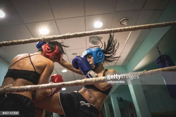 duas mulheres de kickboxers - boxe feminino - fotografias e filmes do acervo