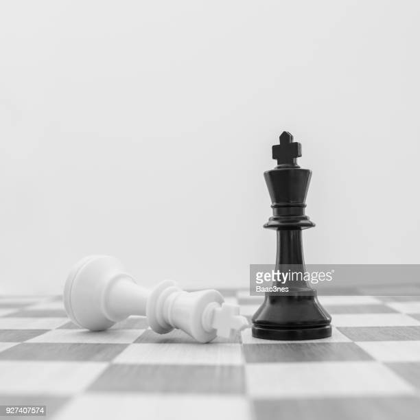 two king chess pieces on a chess board - nederlaag stockfoto's en -beelden
