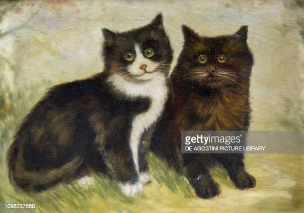 Two kittens oil on canvas signed C L United Kingdom 20th century