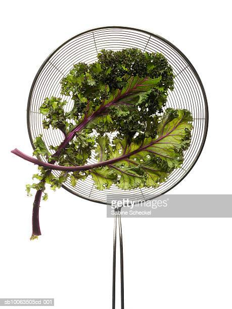 Two leafes of kale on strainer against white background, overhead view