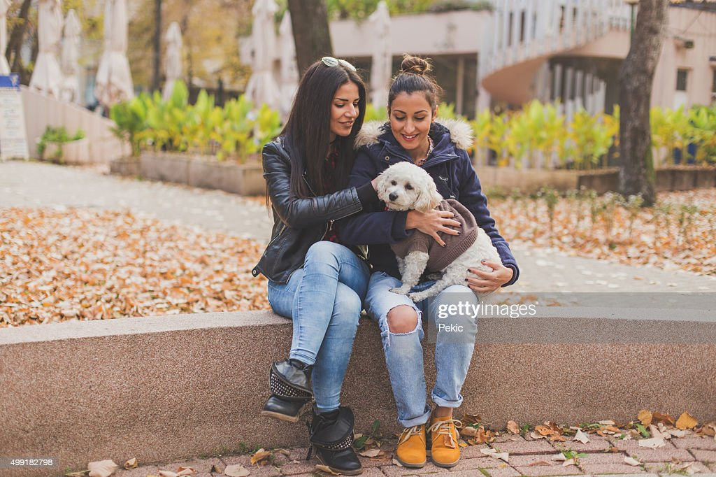 Two lesbians sitting in the park and play with dog : Stock Photo