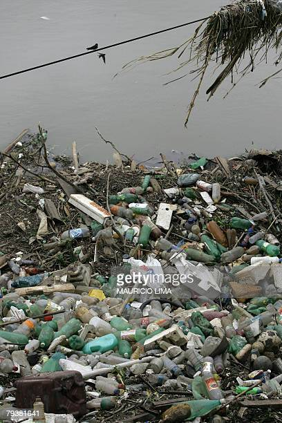 Two little birds lay on a cable near scores of plastic bottles originated from trash lying on the banks of the highly polluted Tiete river the day...