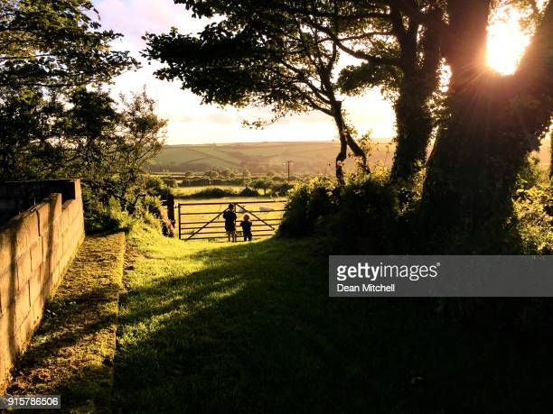 two little boys looking through a farm gate in the countryside - cornwall england stock pictures, royalty-free photos & images