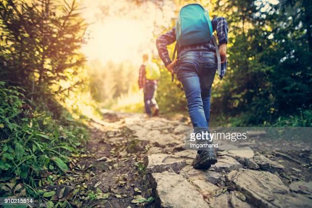 twee kleine broers wandelen in het bos - tegenspoed stockfoto's en -beelden