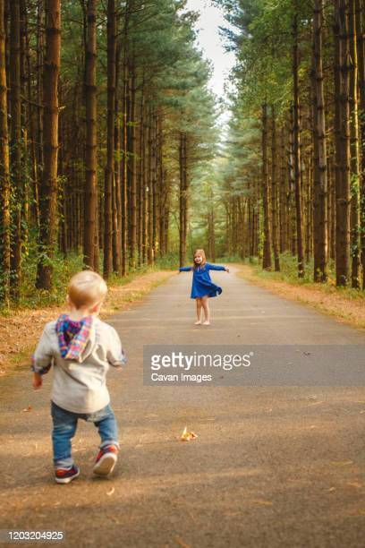 two little children play together on path in a pine forest in sunlight - forens stock pictures, royalty-free photos & images