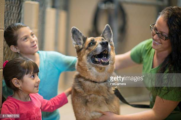 Dos niña pequeña interactivo un perro