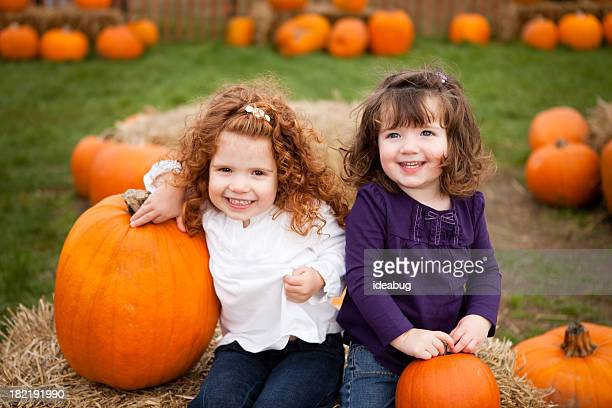 two little girls smiling in a pumpkin patch - pumpkin patch stock photos and pictures