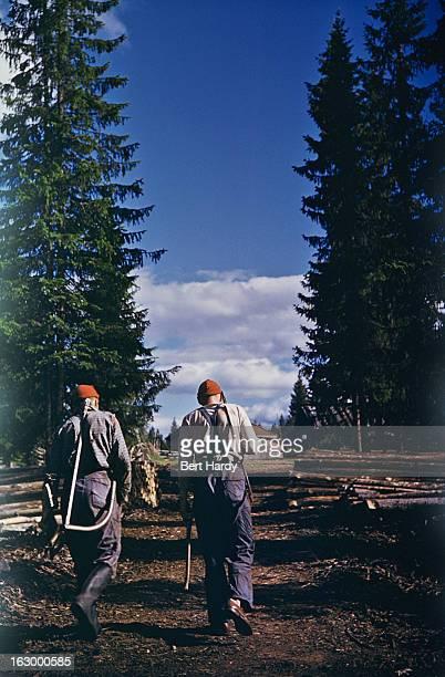Two lumberjacks on their way to work Sweden 1952 Original publication Picture Post 6124 Swedish Village unpub 1952