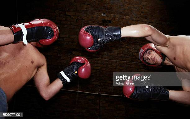 Two male boxers fighting, low angle view