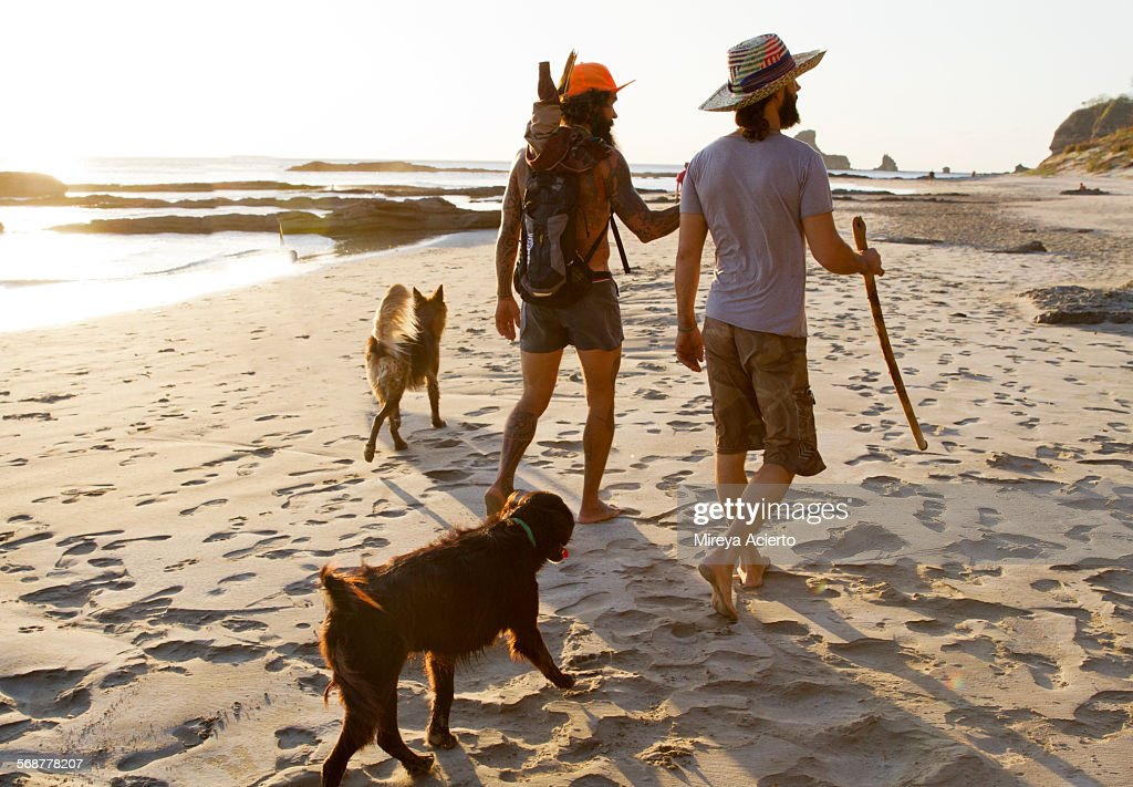 Two male travelers stroll the beach with dogs : Stock Photo