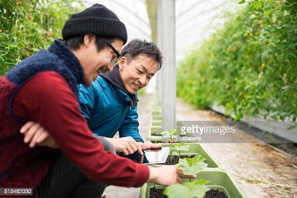 2 人の熟年農業を使う農家、デジタルタブレット