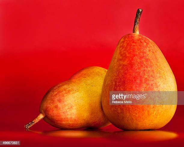 Two mature pears on red background