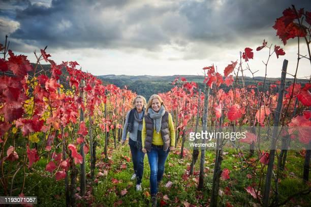 two mature woman strolling through a vineyard - ラインラント=プファルツ州 ストックフォトと画像