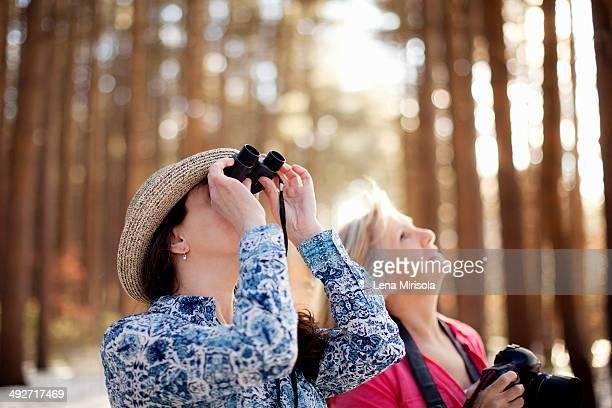 Two mature women bird watching in forest