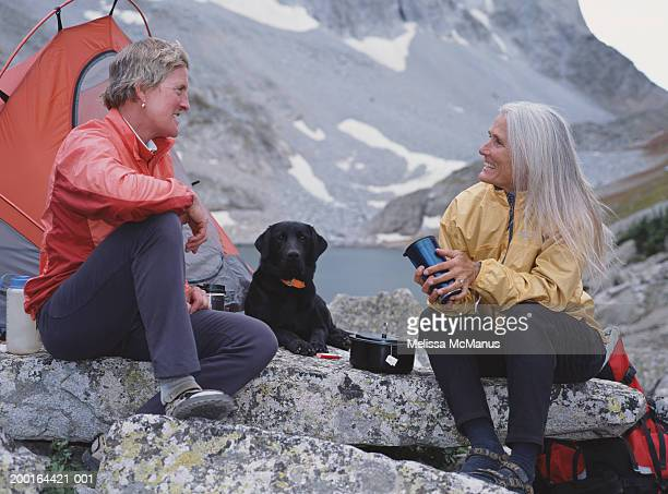 two mature women camping with dog - one animal stock pictures, royalty-free photos & images