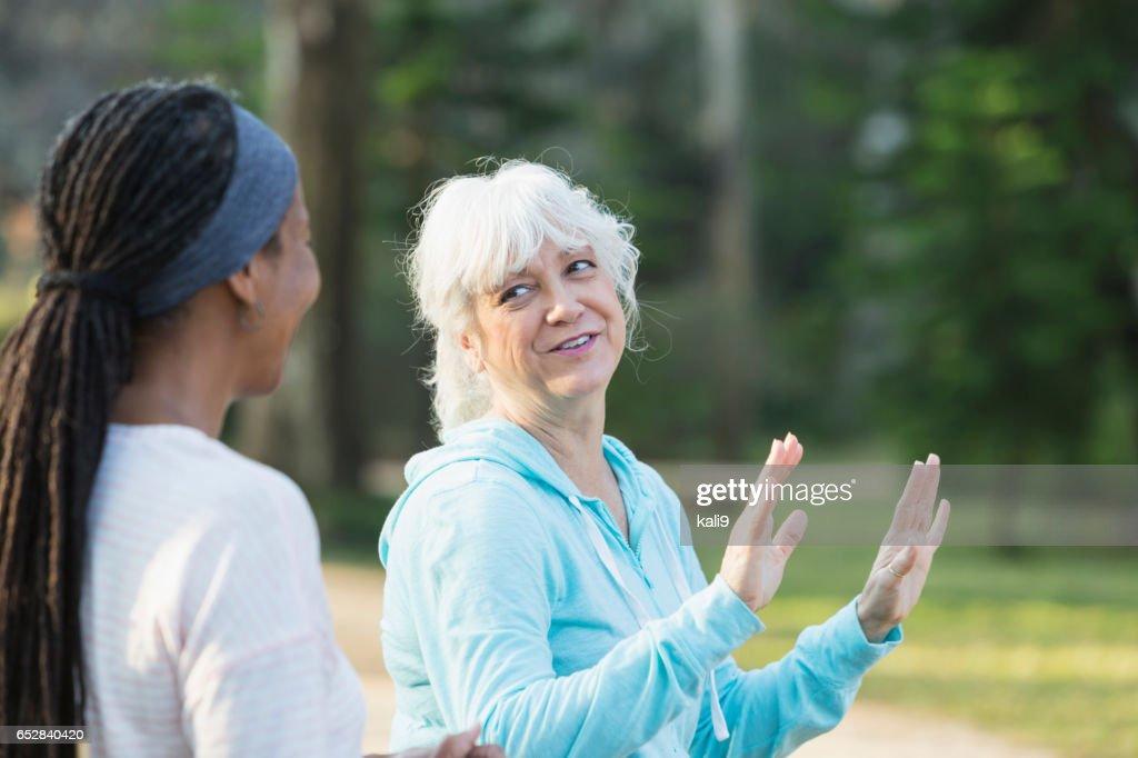 Twee rijpe vrouwen in het park doen tai chi oefeningen : Stockfoto