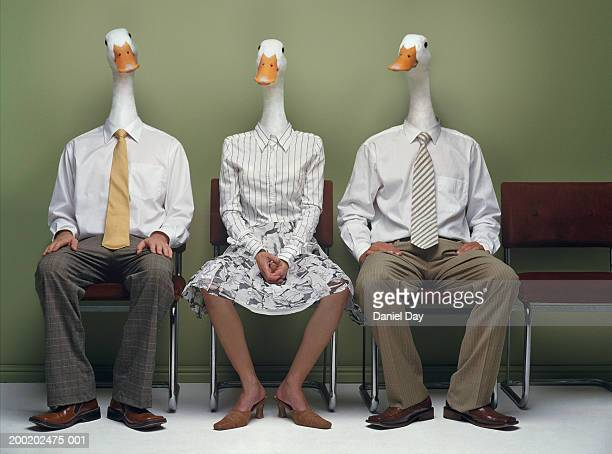 Two men and woman metamorphasised as ducks in row (Digital Composite)