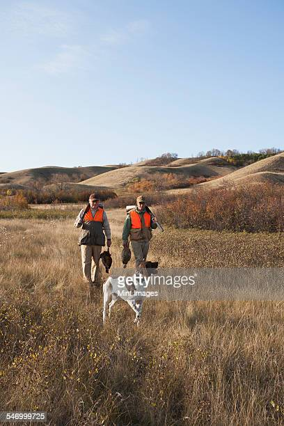 Two men, bird hunters, with shotguns, carrying the days bag of dead birds, and a spaniel dog.