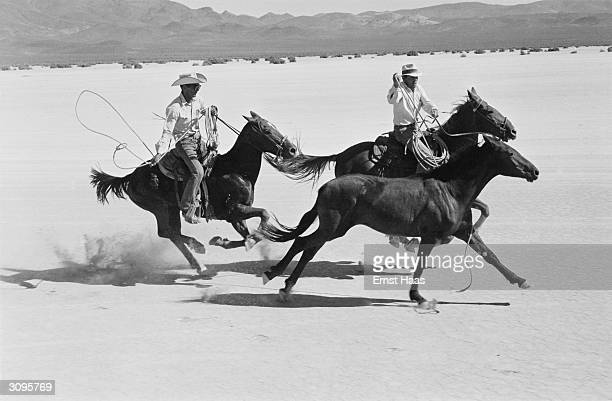 Two men chasing mustangs on horseback on the set of John Huston's 'The Misfits' filming on location in the Nevada Desert