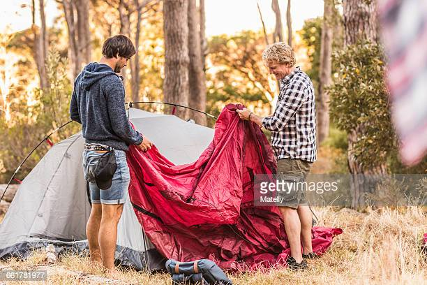 Two men concentrating on putting up tent in forest, Deer Park, Cape Town, South Africa