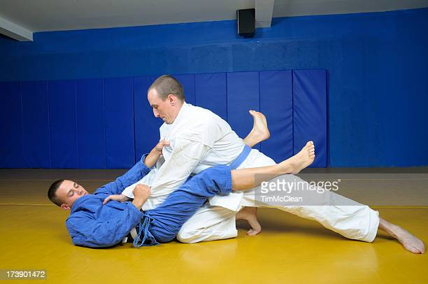 Jiu Jitsu Plausch martial arts