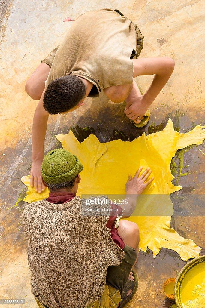 Two men dyeing an animal skin : Stock Photo
