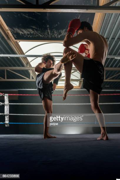two men free fighting - muay thai imagens e fotografias de stock