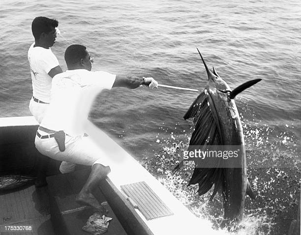 Two men gaff a sailfish at the side of the boat in waters near Club de Pesca, Pinas Bay, Panama circa 1960.