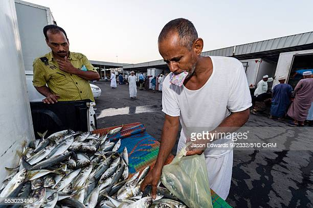 Two men haggle over a mound of sardine fish for sale in a fish market Mutrah Fish Market Muscat Gulf of Oman Sultanate of Oman