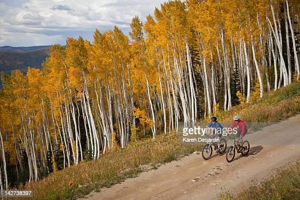 two men mountain biking in autumn, colorado - steamboat springs colorado stock photos and pictures
