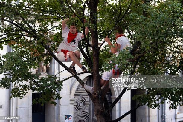 CORRECTION Two men perch on a a tree to watch the bull run on the first day of the San Fermin bull run festival in Pamplona northern Spain on July 7...