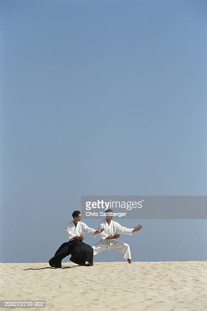 Two men practicing aikido in desert