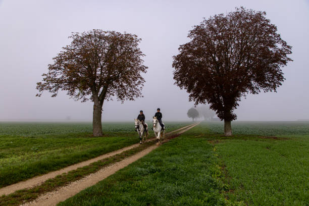 Two men riding horses along dirt road between trees in rural area during fog