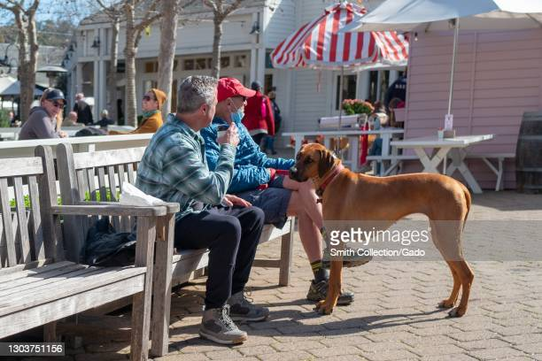 Two men sitting on a bench with their dog on a sunny day, Larkspur, California, February 13, 2021.