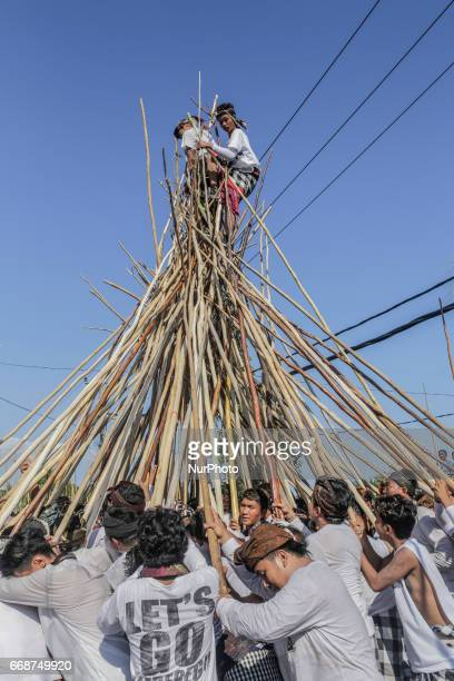 Two men stands on a wooden pyramid of sticks during the Mekotek Ritual practiced by Balinese Hindus in the village of Munggu on April 15 2017 in...