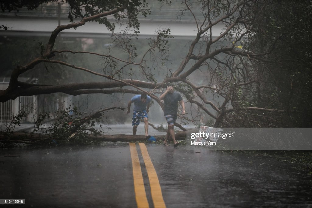 Two men walk through a downed tree as Hurricane Irma's full force strikes in Miami, Fla., on Sept. 10, 2017.