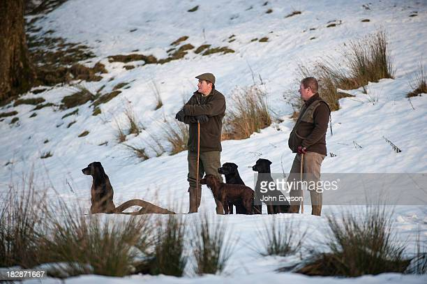 Two men with Labrador dogs and a spaniel waiting to pick-up after a shoot in the snow.
