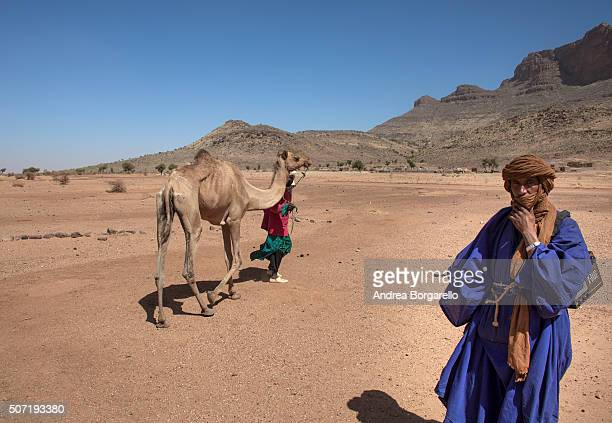 Two men with their camels next to the Dountza Mountain on January 20 2010 in Dountza Mopti region Mali The Dountza area is known for his fascinating...