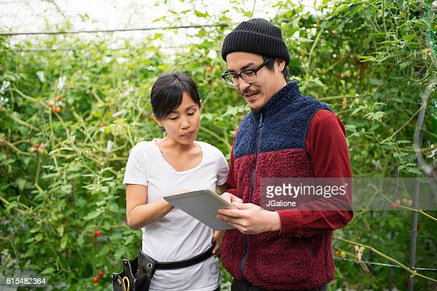 2 つのミッドアダルトを使う農家、デジタルタブレット