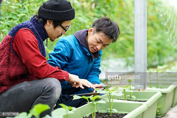 Two mid adult men using wireless technology in agriculture
