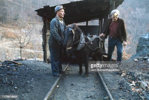 Two miners with a pit pony near a drift mine Pike County Kentucky US 1967