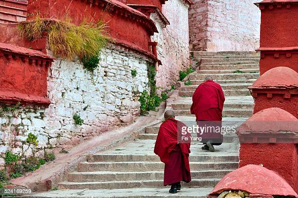 Two monks walking in the Monastery