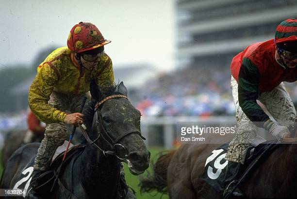Two mud splattered riders and horses during a race at Royal Ascot Mandatory Credit Dan Smith/Allsport