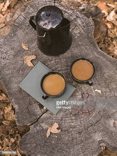Two mugs of coffee and a coffee pot on a tree trunk.