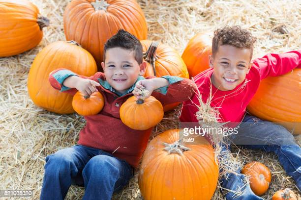 two multi-ethnic boys in pumpkin patch - pumpkin patch stock photos and pictures