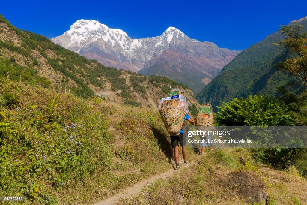 Two Nepali porters are carrying necessary stuffs to villages near the Annapurna Conservation Area, Nepal. : Stock Photo