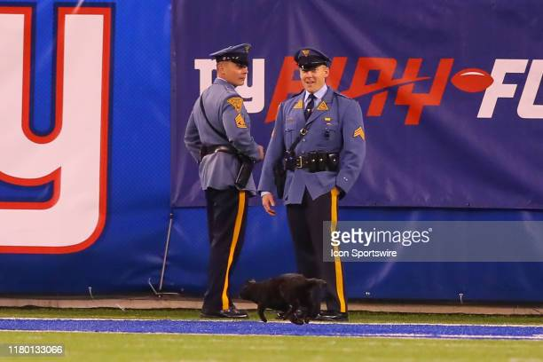 Two New Jersey State Troopes look on as a Black Cat runs onto the field during the National Football League game between the New York Giants and the...