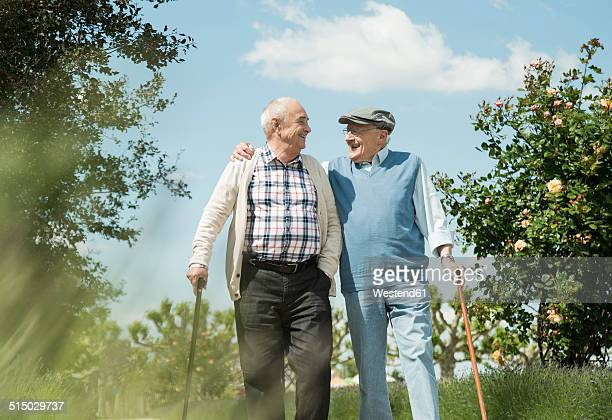 Two old friends walking in the park